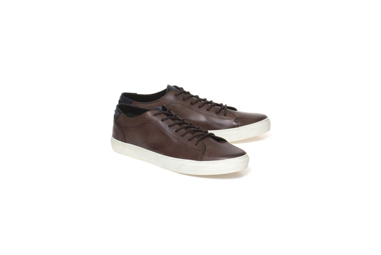 Sapatenis-Jeanswear-Estampa-Inglesa---Marrom